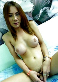 Busty and hairy ladyboy Lay