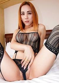 Japan XXX Ladyboy Anus Pictures